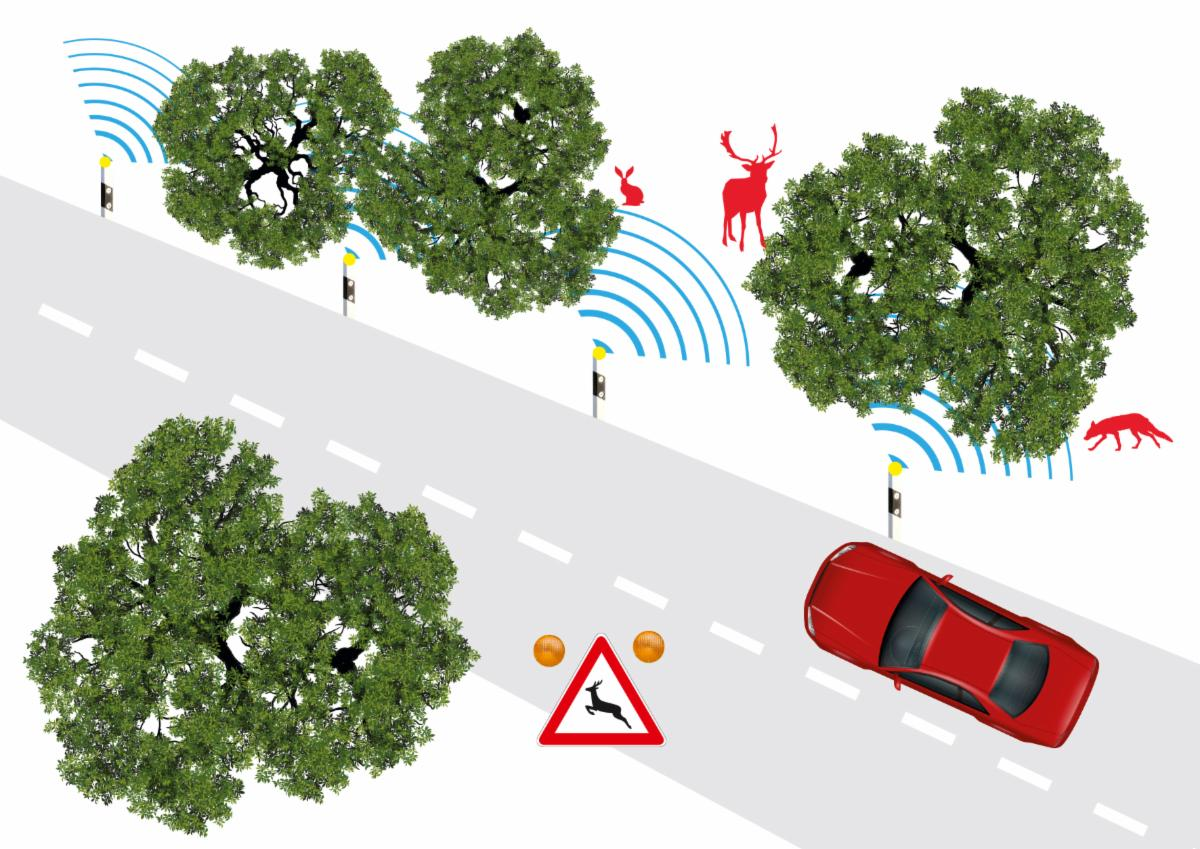 Principe du radar routier Salus détectant les animaux sauvages.